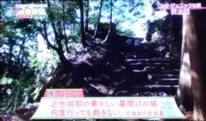 『あなたも絶対行きたくなる!日本最強の城 明智光秀スペシャル』